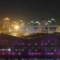 Shanghai UBPA site Expo 2010