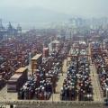 Shenzhen Container Terminal