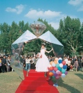 Shanghai Mass Wedding, Fuxing Park