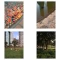 Shanghai-LuJiaZui Park 15 years apart