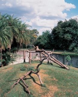 Brasilia, Zoo