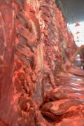 Beijing Meat Market Xinfadi, brandeins