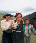 Women taking care of her Yaks, mountain side, Tagong Sichuan