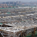 Sosc construction site, venues for the 2011 Swimming World Championships Competition, architects gmp, Shanghai