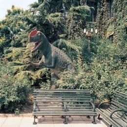 Beijing, Dinosaur at Museum Park